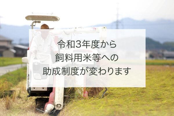 令和3年度から飼料用米等への助成制度が変わりますec