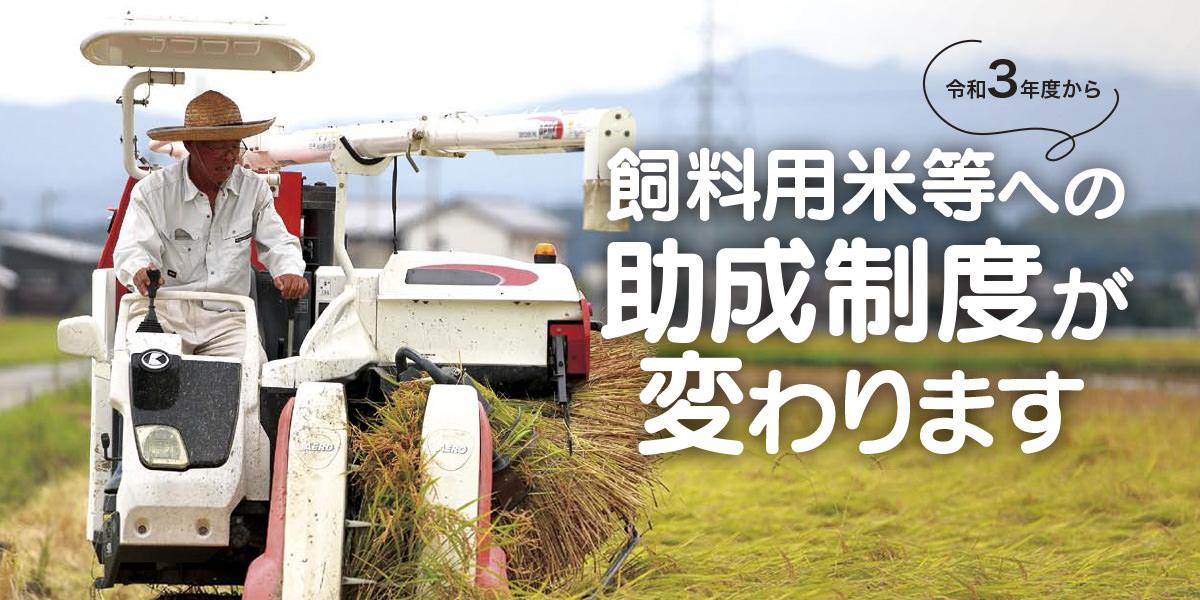 令和3年度から飼料用米等への助成制度が変わります